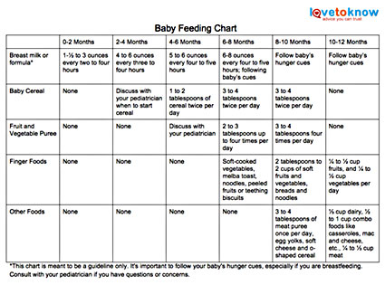 How Much Food Should You Feed Your Baby?