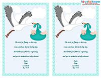 stork poem baby shower invitation