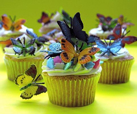Butterfly Cupcake Images : Butterfly Cupcakes [Slideshow]