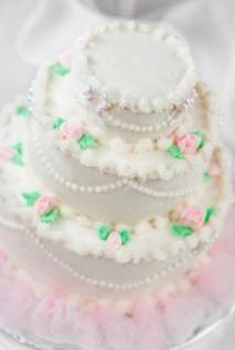 Cake Recipe: Cake Decorating Frosting Recipe Without ...