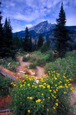 Wyoming Hiking Trails