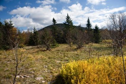 Catskill Mountain Range