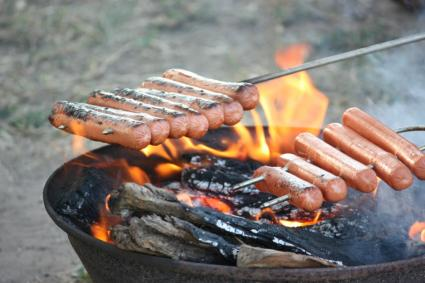 Campfire Hot Dogs