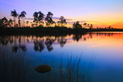Pine Glades Lake Sunset