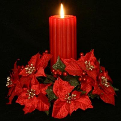 poinsettia candle rings if you want to decorate with candles for the