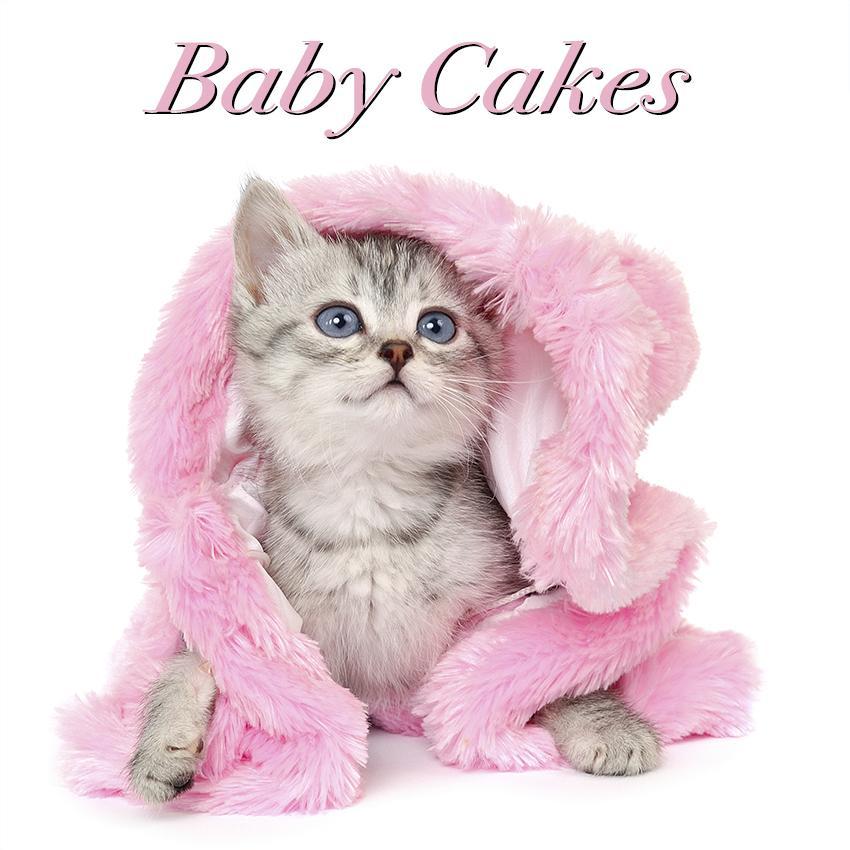 Best girl kitty names