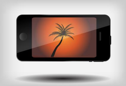 Palm Tree Phone Background