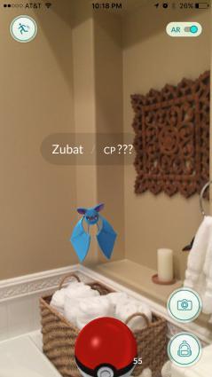 Zubat in the bathroom