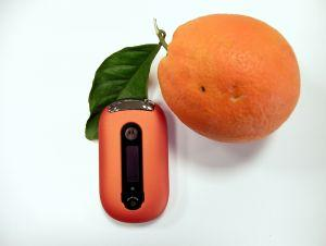 Cellular South Phones, like the Motorola PEBL featured with a Florida orange