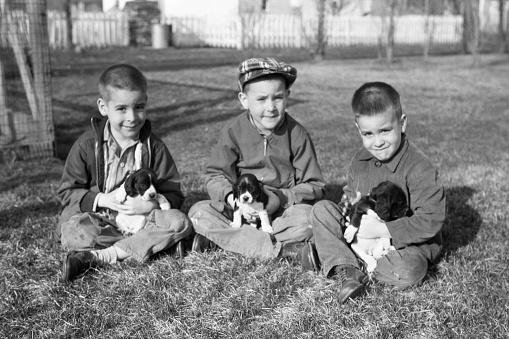 boys with puppies