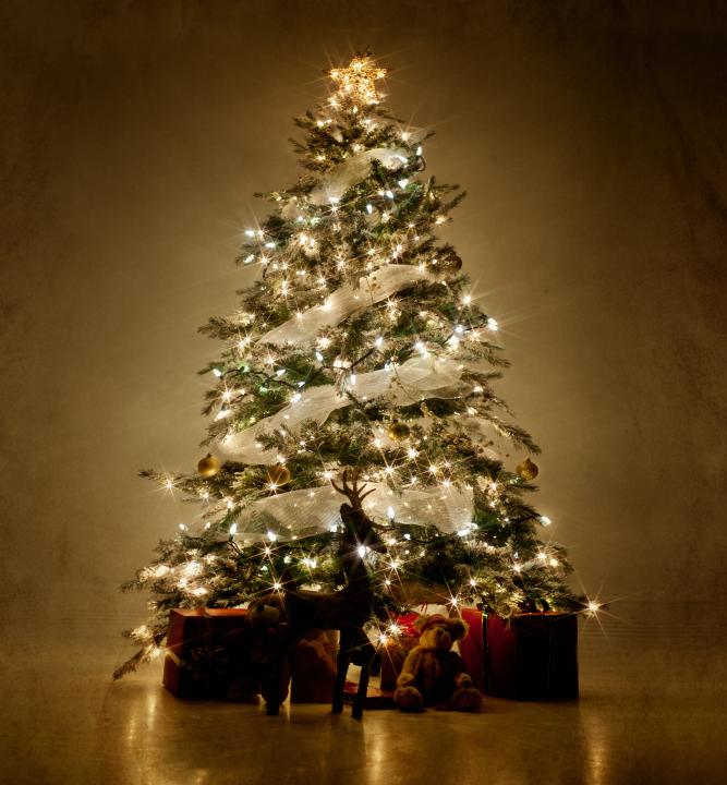 Pictures Of Decorated Christmas Trees LoveToKnow - Christmas Lights Christmas Tree