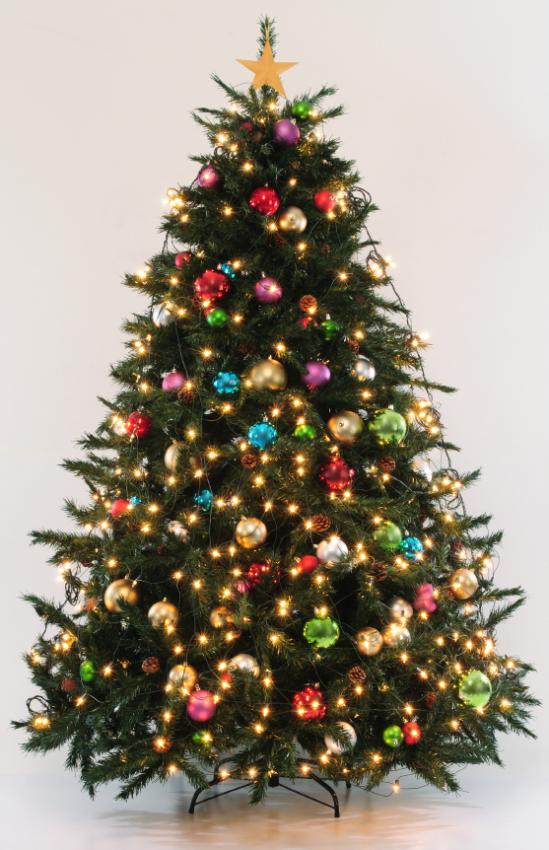 Http Christmas Lovetoknow Com Slideshow Pictures Of Decorated Christmas Trees