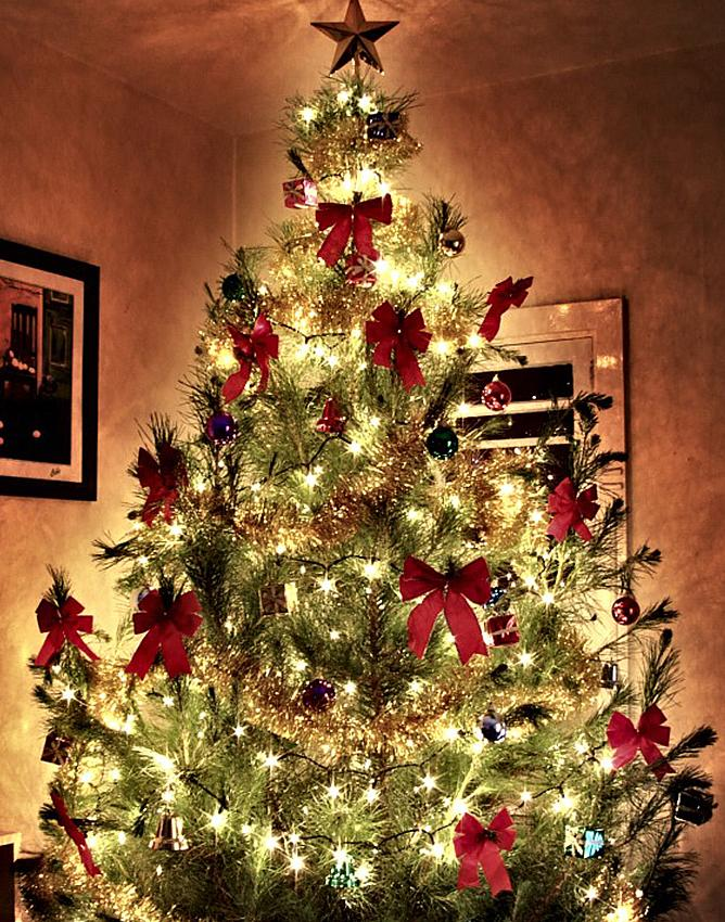 Christmas Tree Decorating With Wire Ribbon : Decorating a christmas tree with ribbon slideshow