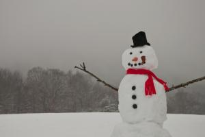 Frosty the Snowman; © Ondreicka | Dreamstime.com