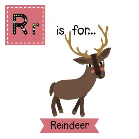 R is for Reindeer
