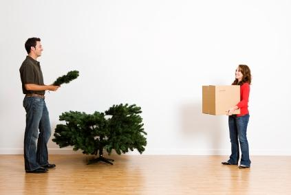 Choosing A Christmas Tree Storage Container
