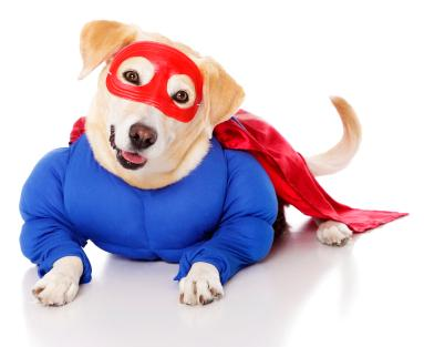 Superhero costume