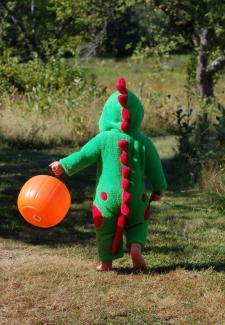 toddler dragon