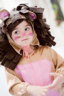toddler lion