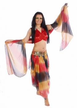 Belly Dance Organza Costume Set