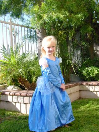 Homemade Cinderella costume.
