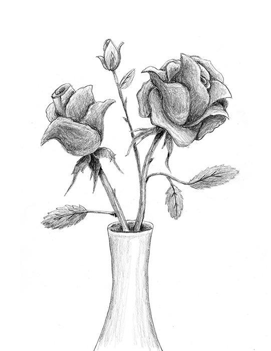 how to draw a rose slideshow. Black Bedroom Furniture Sets. Home Design Ideas