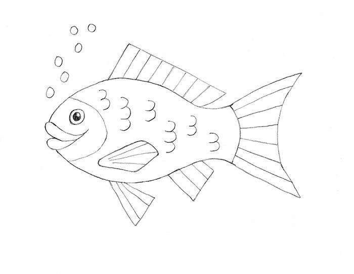How to draw a fish slideshow for Fish drawing pictures