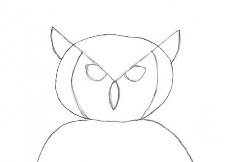 How to draw an owl slideshow for Owl beak drawing