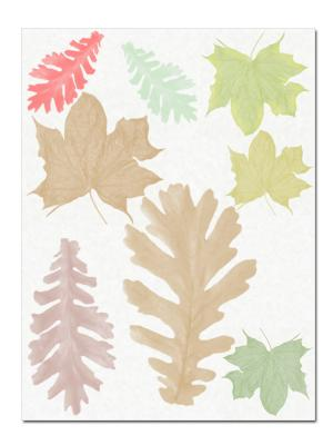 nature print leaves on paper