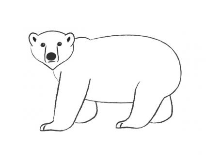 Easy Polarbear Drawings