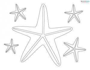 Sea Craft Patterns 1 starfish
