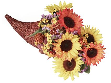 Cornucopia of Flowers