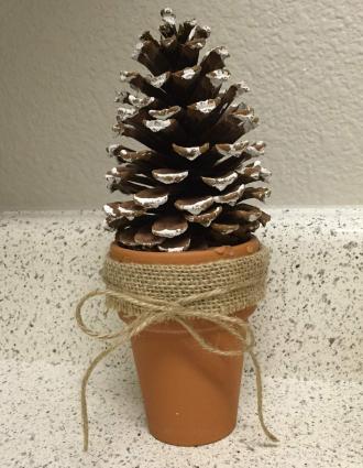 Pinecone tree in flower pot