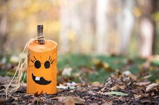 Rustic wooden pumpkin craft