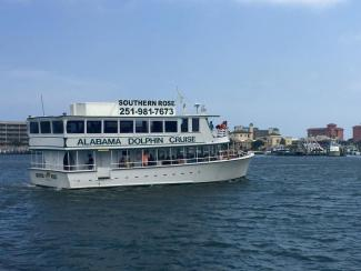 Souther Rose Dolphin Trips