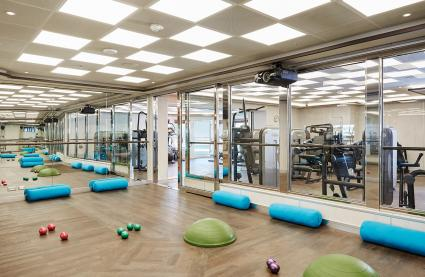 Silver Muse Gym
