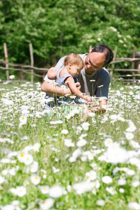 Father and son in a daisy field