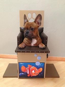 Little Nemo