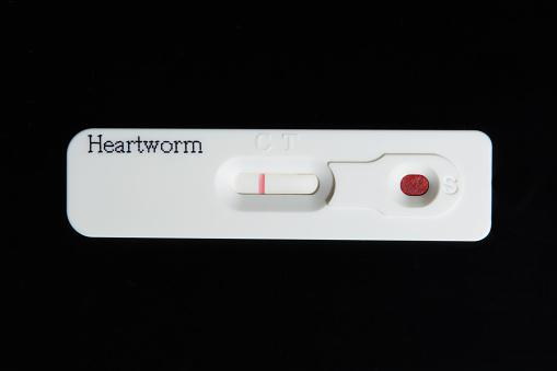 Heartworm test