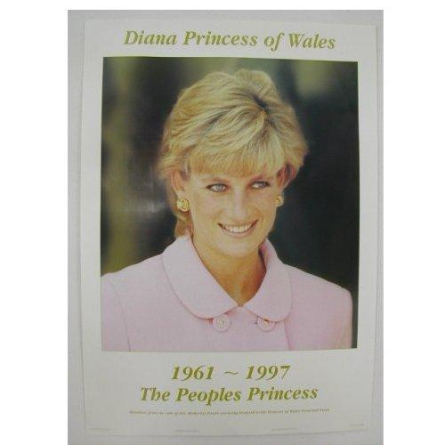 princess diana car crash injuries. Princess Diana Accident Photos