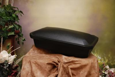 Large economy casket from Pets In Remembrance