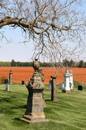 burial and cremation