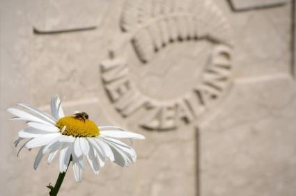 why we establish memorials
