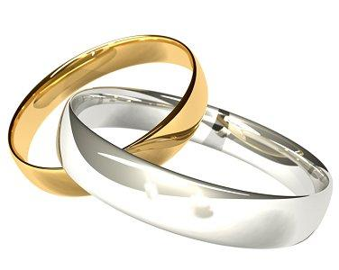 2 Wedding Rings Wedding Gallery