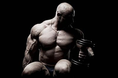 Fitness Workouts Bodybuilding