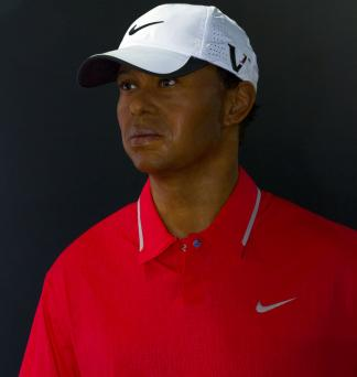 Tiger Woods with Nike polo shirt
