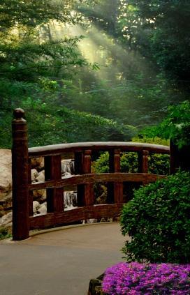 Creating A Serene Feng Shui Garden