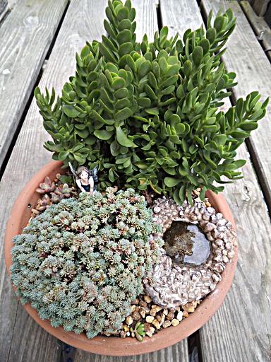 Garden   LoveToKnow