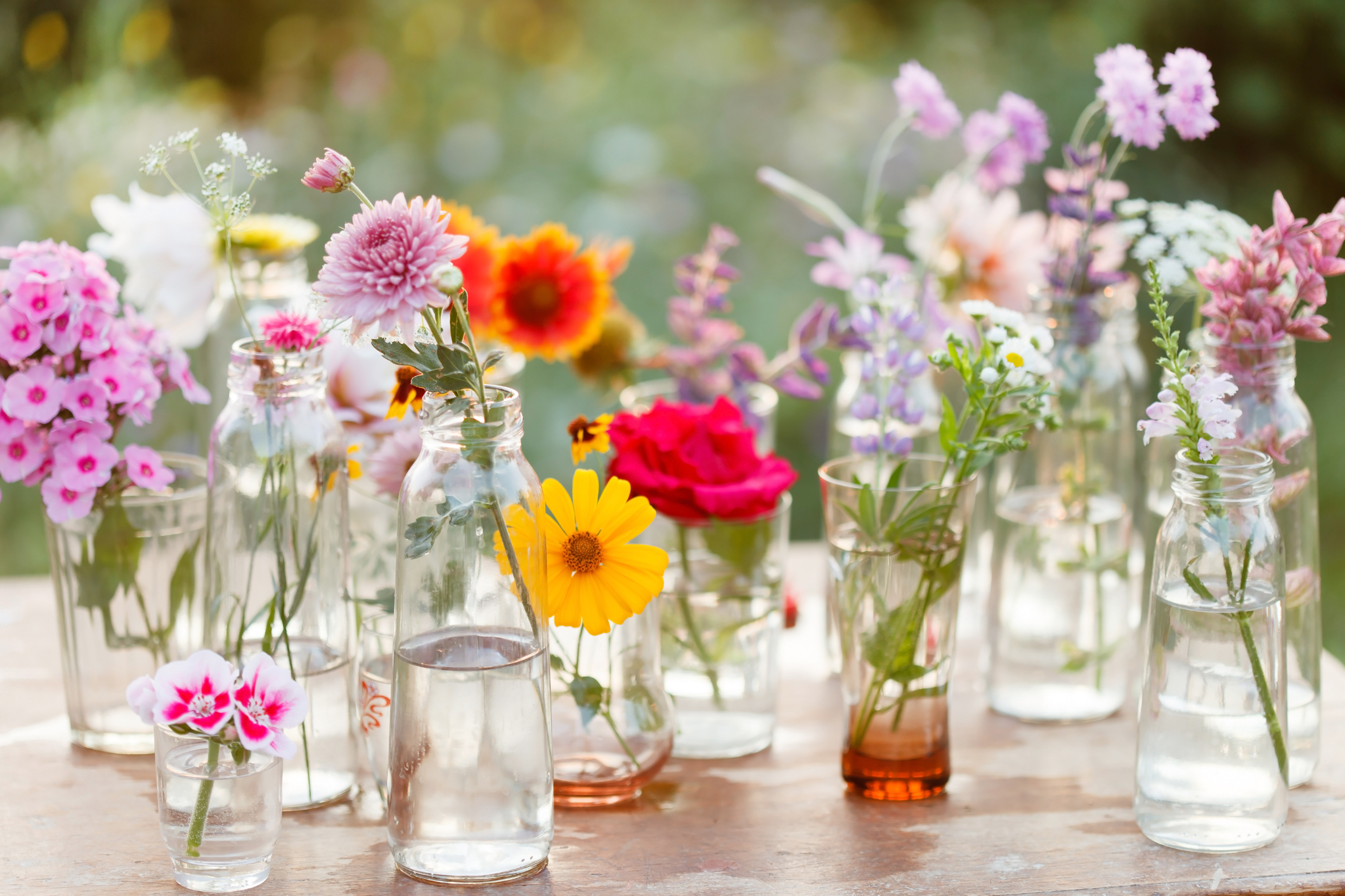 A list of spring flowers dhlflorist Images