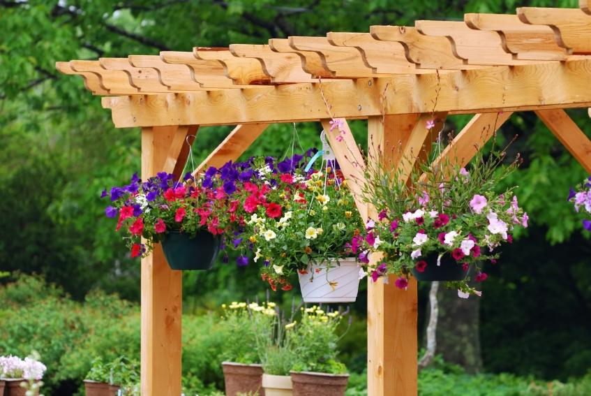 pictures of container garden examples - Garden Examples Photos